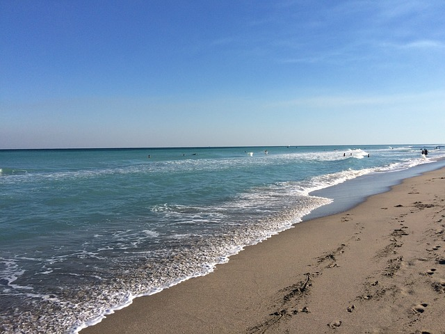 new business formation near the beach in Boca Raton, Florida
